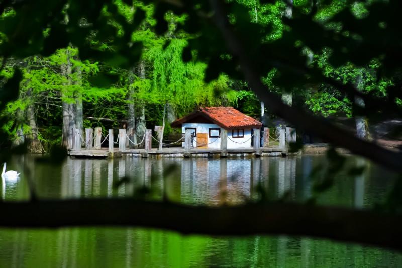 (@yedincikat) Atatürk Arboretum