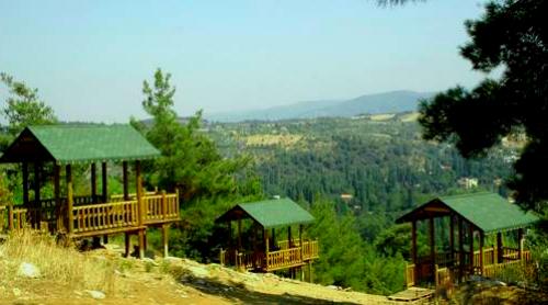 atatürk kent ormanı seyir teras