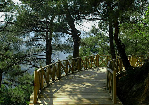 Bursa Atatürk kent ormanı yürüyüş parkuru