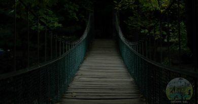 bursa kent ormanı köprü