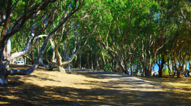 karataş kumluk tabiat parkı