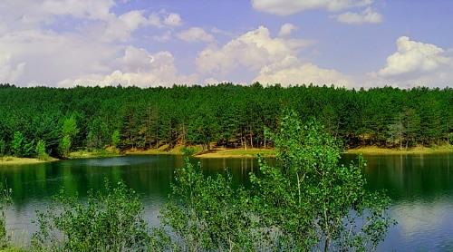Yozgat-camligi-milli-parki