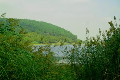 dagyenice-goleti-kamp-alani