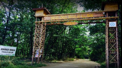 igneada-longoz-ormanı-milli-parki