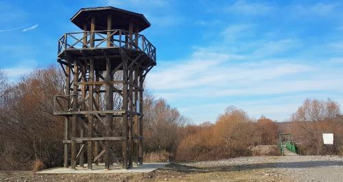 karatepe-aslantas-milli-parki-kus-gozlem-kulesi