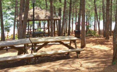 yozgat-camligi-piknik-alani