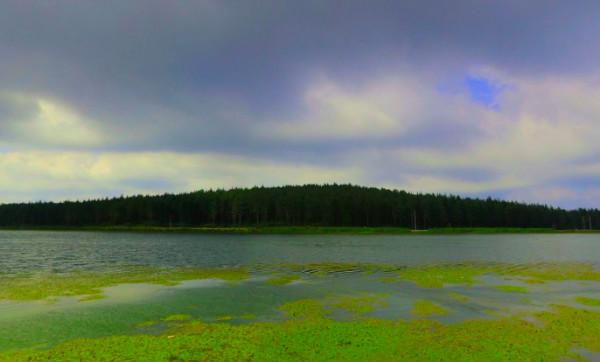 Topuk Yaylası ve Göleti
