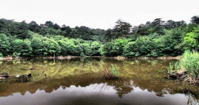 Yalova Dipsiz Göl Erikli Şelalesi Delmece Yaylası