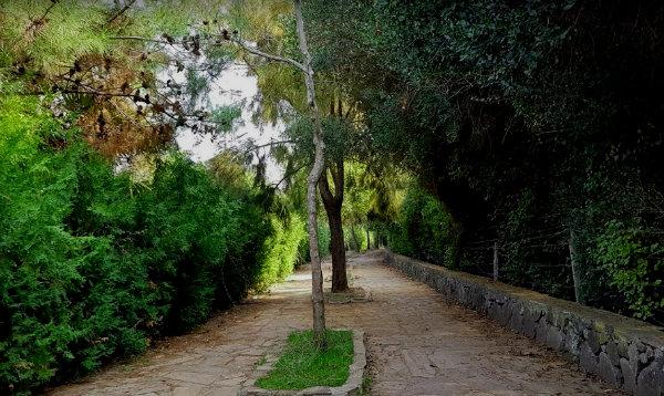 Dilek Yarımadası Büyük Menderes Deltası Milli Parkı Bisiklet ve Yürüyüş Yolu