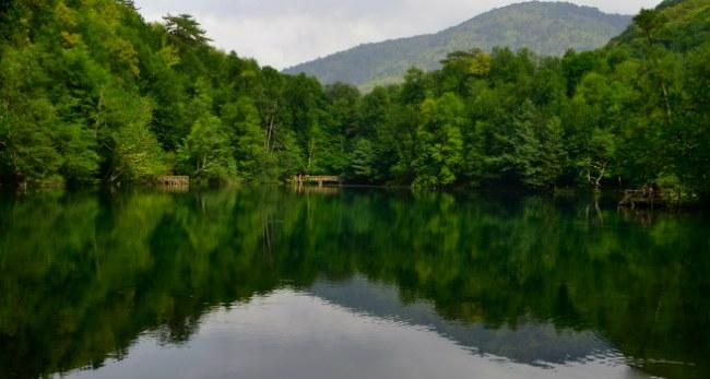 Yedigöller Milli Parkı ( Büyük Göl )