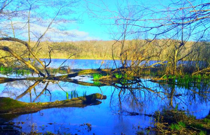 İğneada Longoz Ormanları Milli Parkı