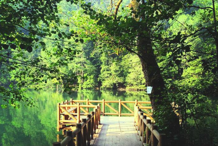Yedigöller Milli Parkı