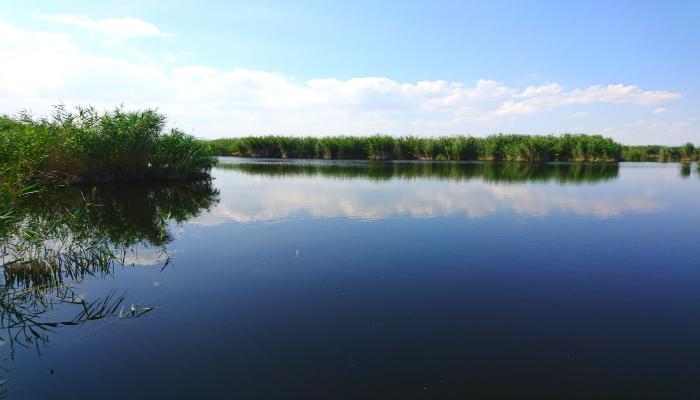 Sultan Sazlığı Milli Parkı